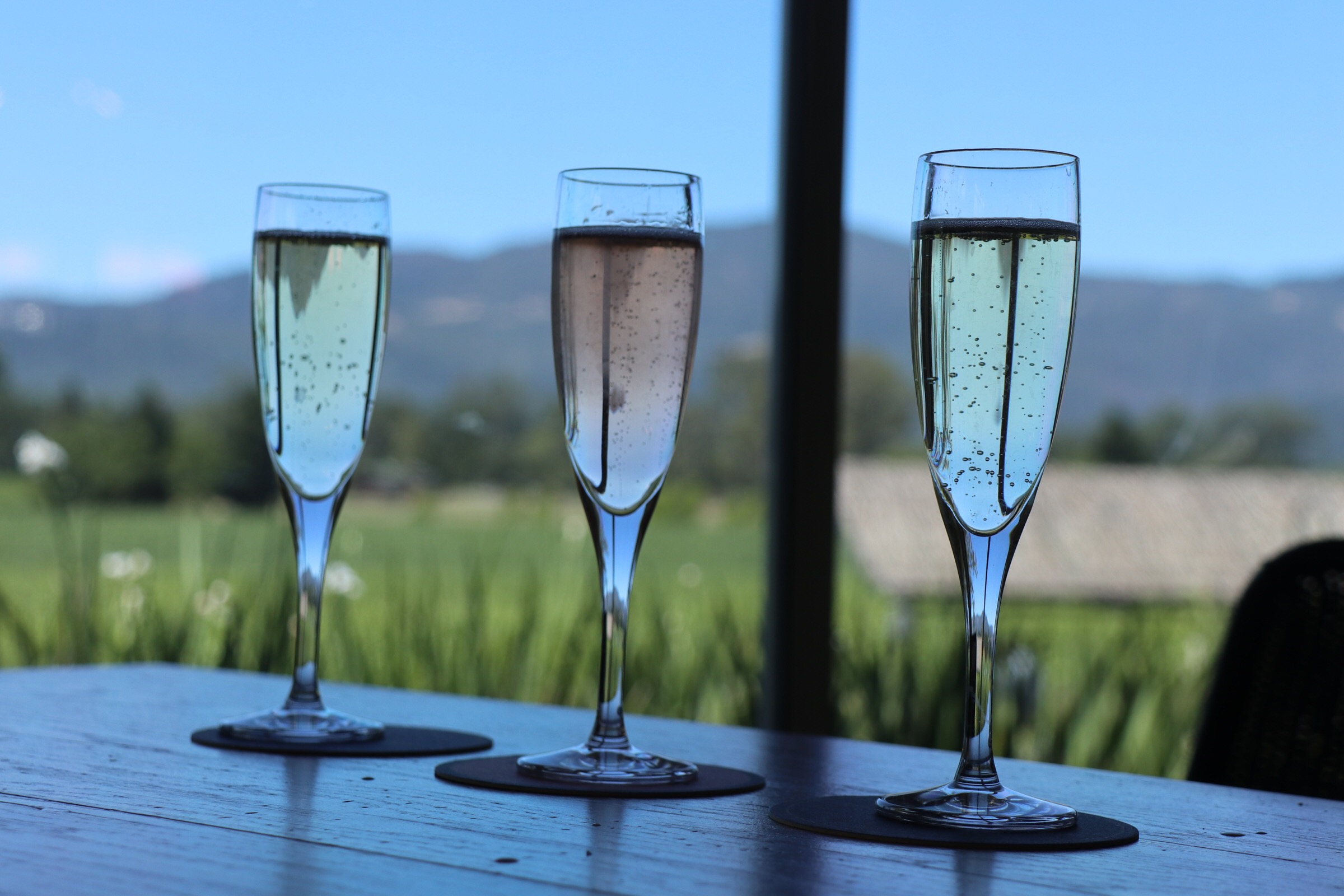 Napa bubbles vineyard reizen MOMspiration.nl