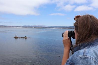 Monterey Bay Aquarium reizen MOMspiration.nl